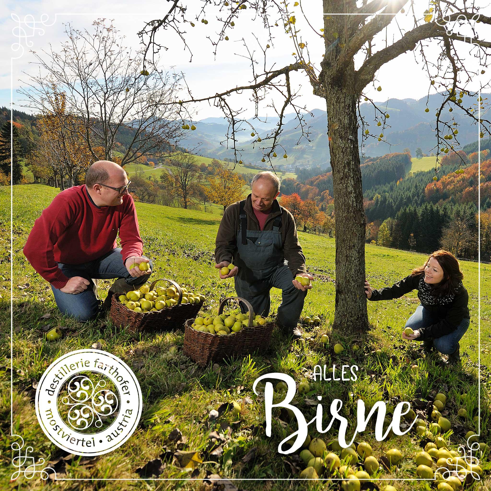 Alles Birne - Destillerie Farthofer