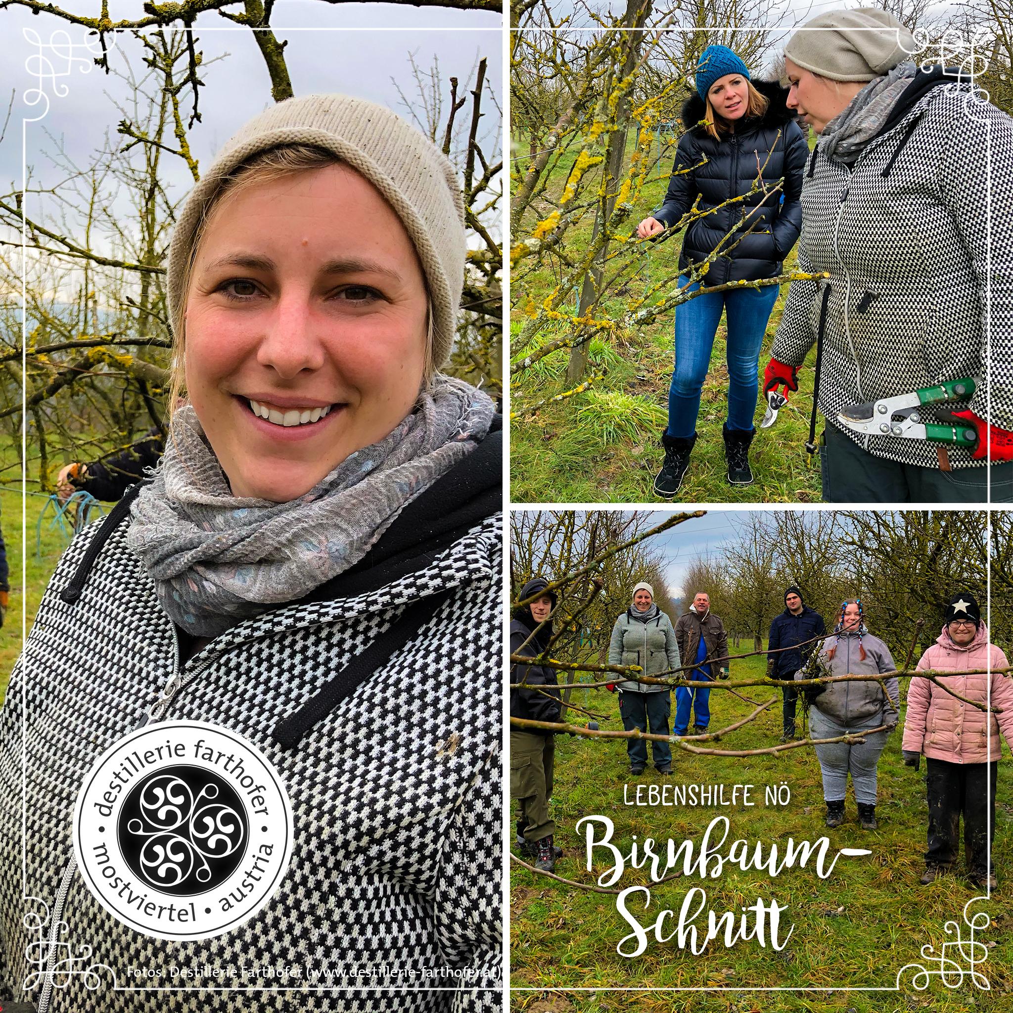 Blog Tag des Bodens - Destillerie Farthofer