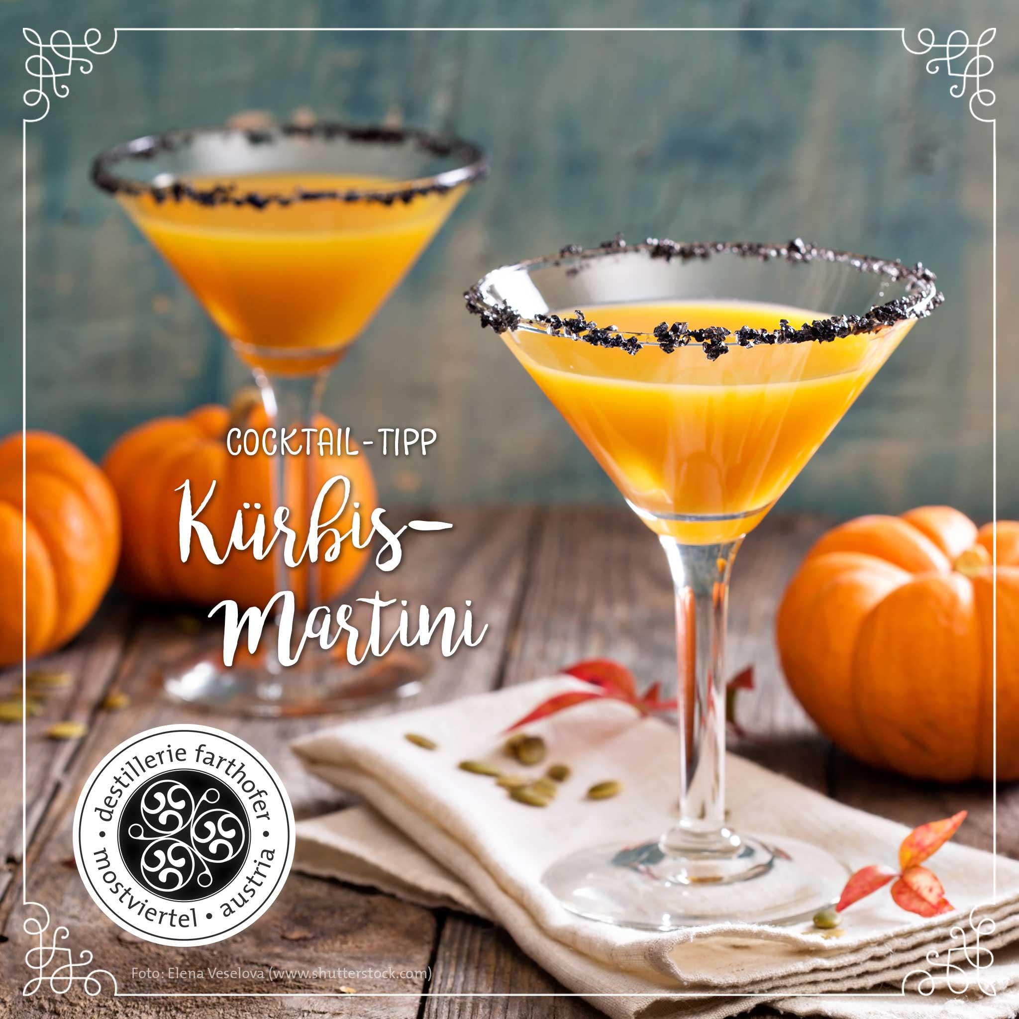 Cocktail-Tipp: Kürbis-Martini - Destillerie Farthofer