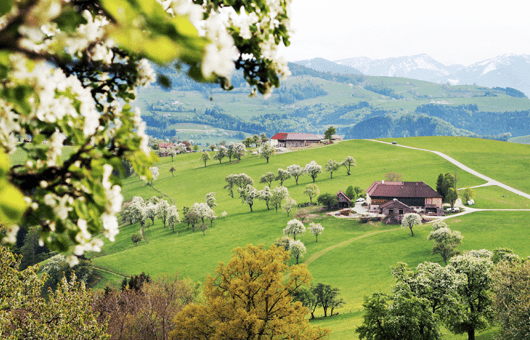Landschaft Mostviertel, Niederösterreich