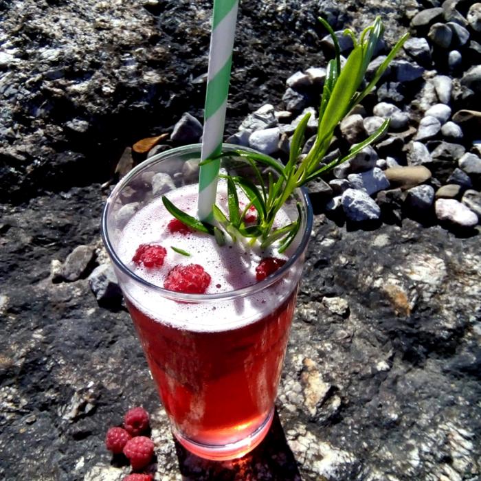 Cocktail mit Bio Waldhimbeergeist - Destillerie Farthofer